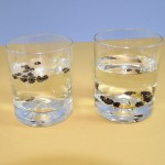 Πείραμα με Νερό και Σόδα για Παιδιά
